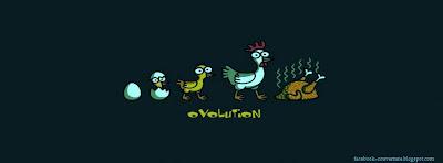 Couverture facebook humour evolution poule