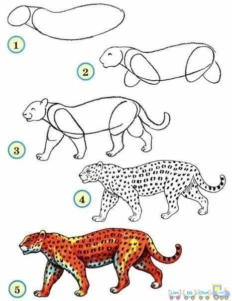 Hướng dẫn vẽ hình - con báo