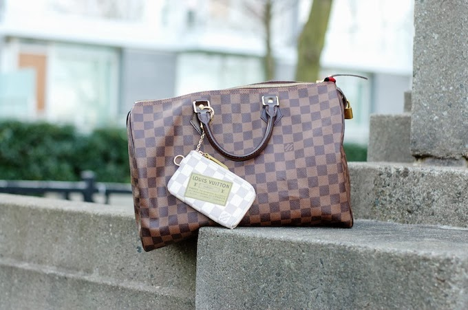 Louis Vuitton Damier Speedy