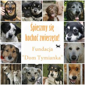 Proszę, podaruj im trochę szczęścia:)