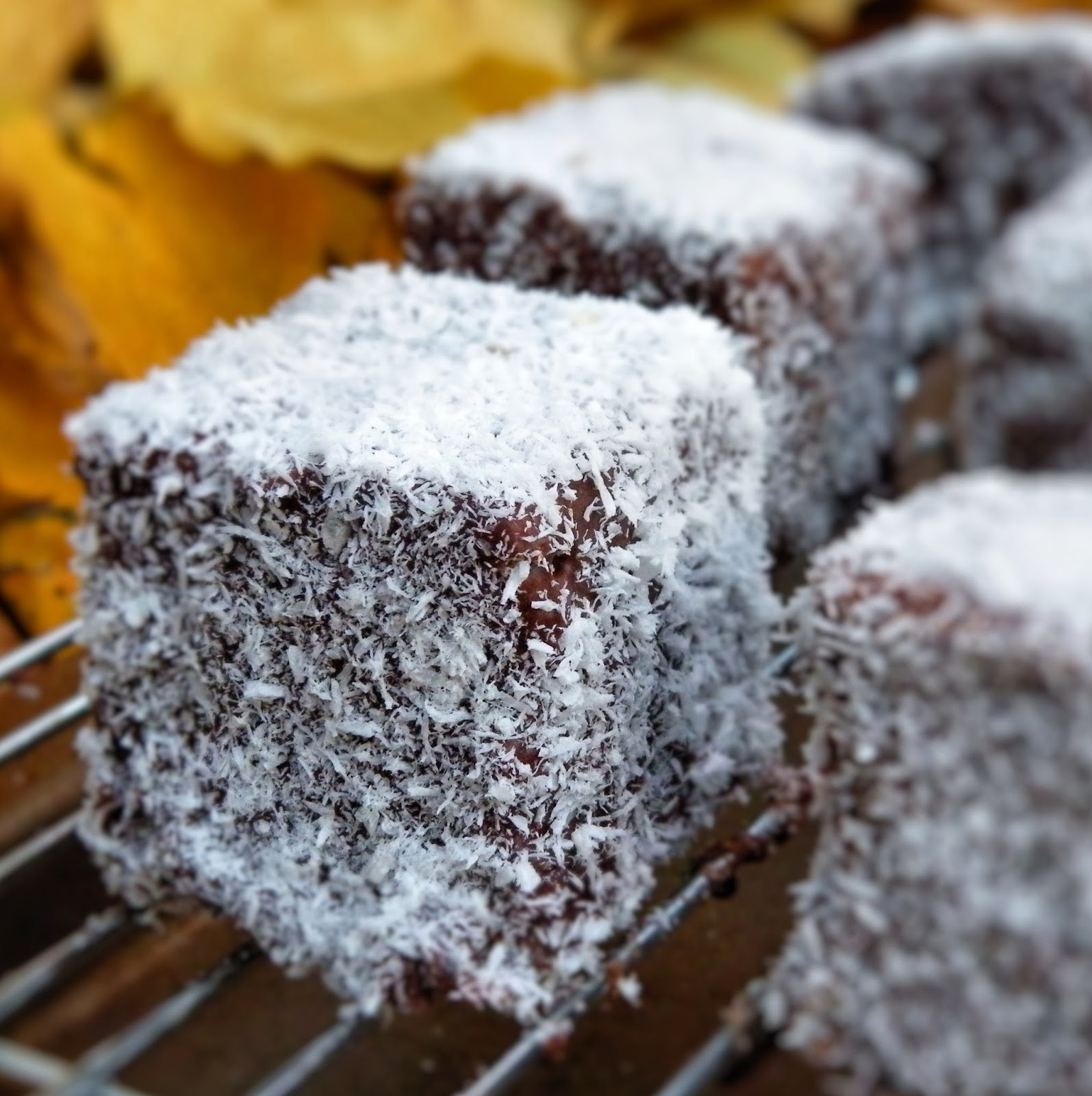 you ever made lamingtons before have you ever even heard of lamingtons ...