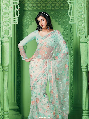 Bollywood Creative Sarees Collection 2011