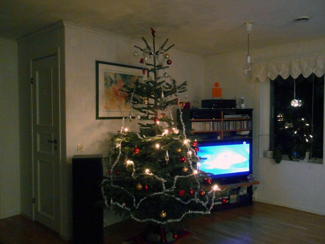 Ancora con l'albero di Natale in casa!