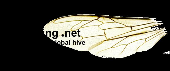 BeesWing.net