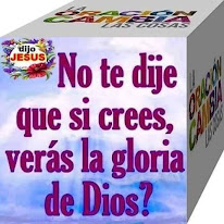 ¿No te he dicho que si crees verás la Gloria de Dios?