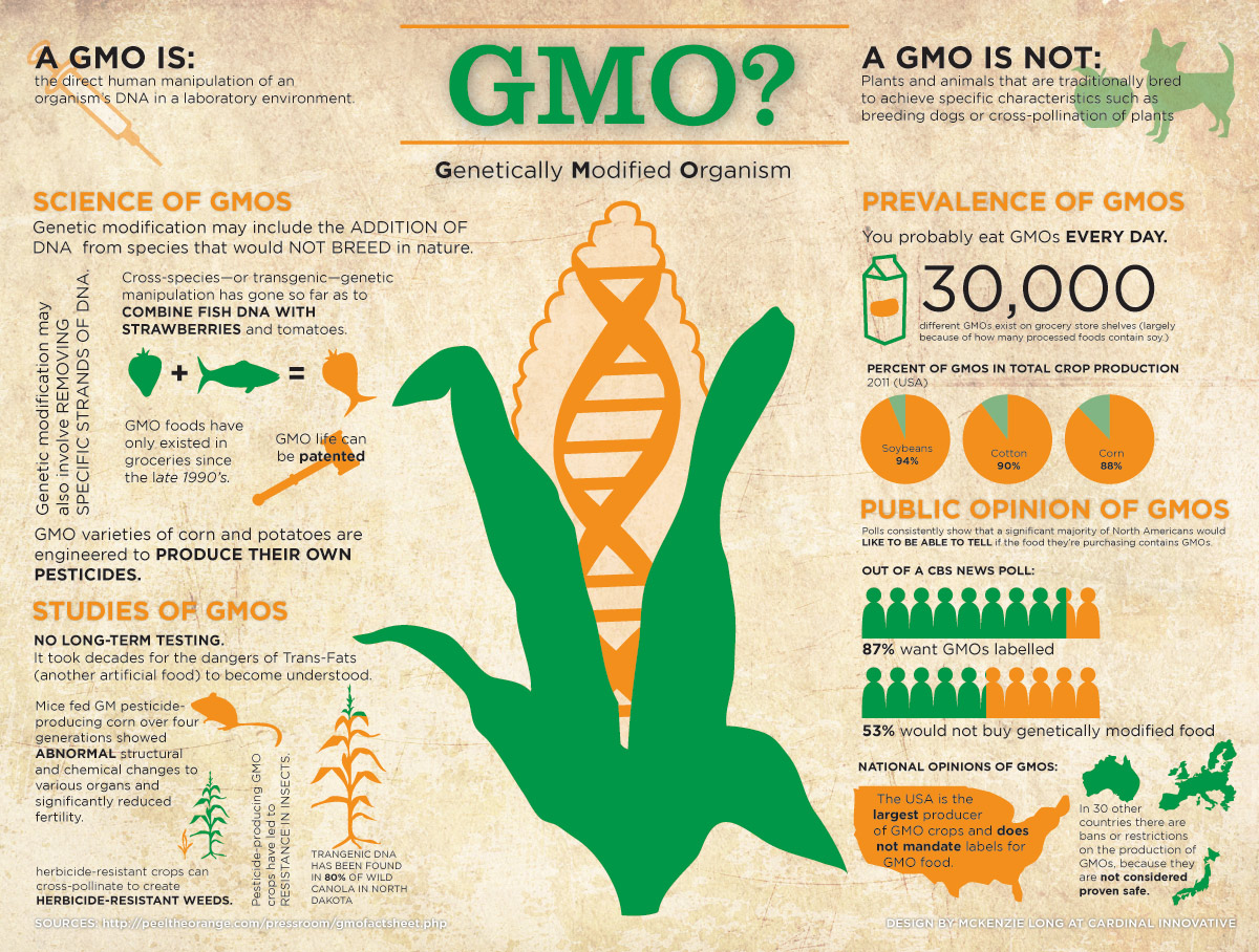 the creation purpose safety regulation and the foods that contains genetically modified organisms