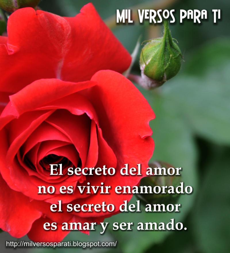 Imagenes De Amor Secreto - 3 imágenes con frases para tu amor secreto