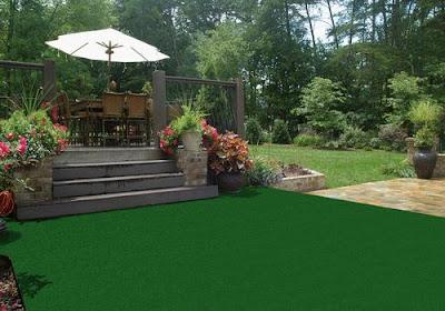 Indoor Outdoor Carpeting Green Plants