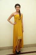 Pranitha latest dazzling pics-thumbnail-1