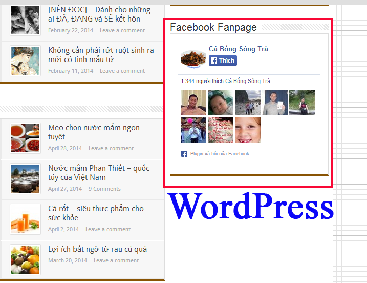 cach chen box like fapge vao website, blogger