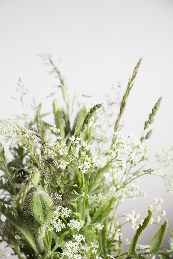 wild bouquet, airy bouquet, bouquet queen anne's lace, grass, bouquet grass, queen anne's lace and grass