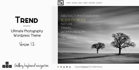 photo website theme