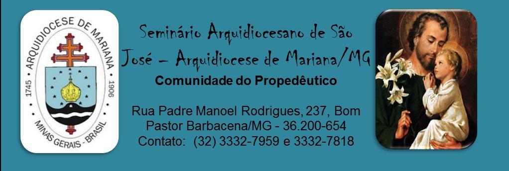 Seminário São José - Propedêutico