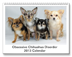2013 Obsessive Chihuahua Disorder Calendar