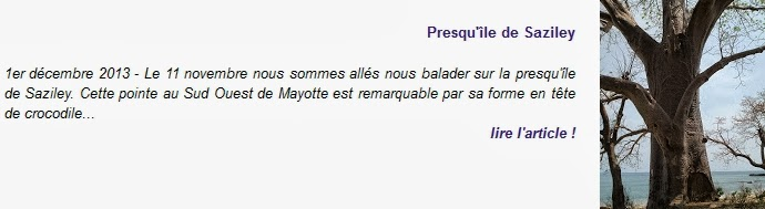 http://blogger-expatries-a-mayotte.blogspot.com/2013/12/presquile-de-saziley.html