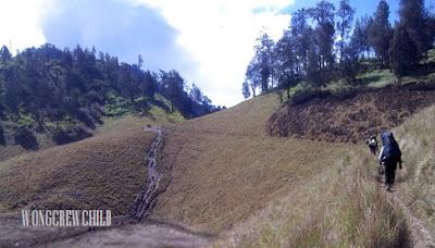 trek pendakian gunung semeru melewati oro-oro ombo