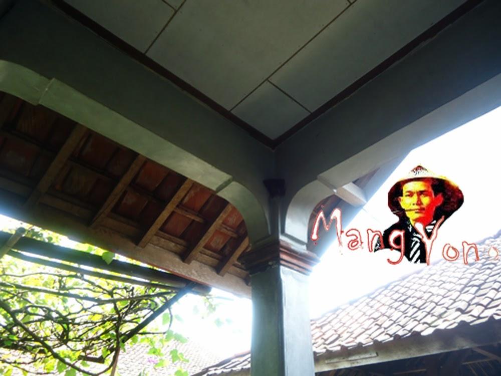 Sarang Burung Layang-Layang atau Pacific Swallow (Hirundo tahitica)
