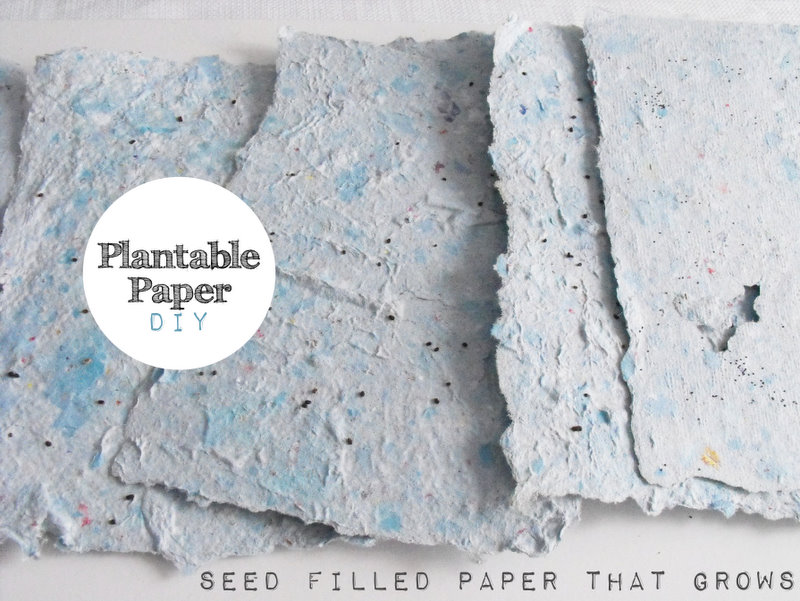seeded paper Personalized seed paper promotional products made from seed paper are a perfect solution for organizations and individuals wanting to promote themselves in a manner.