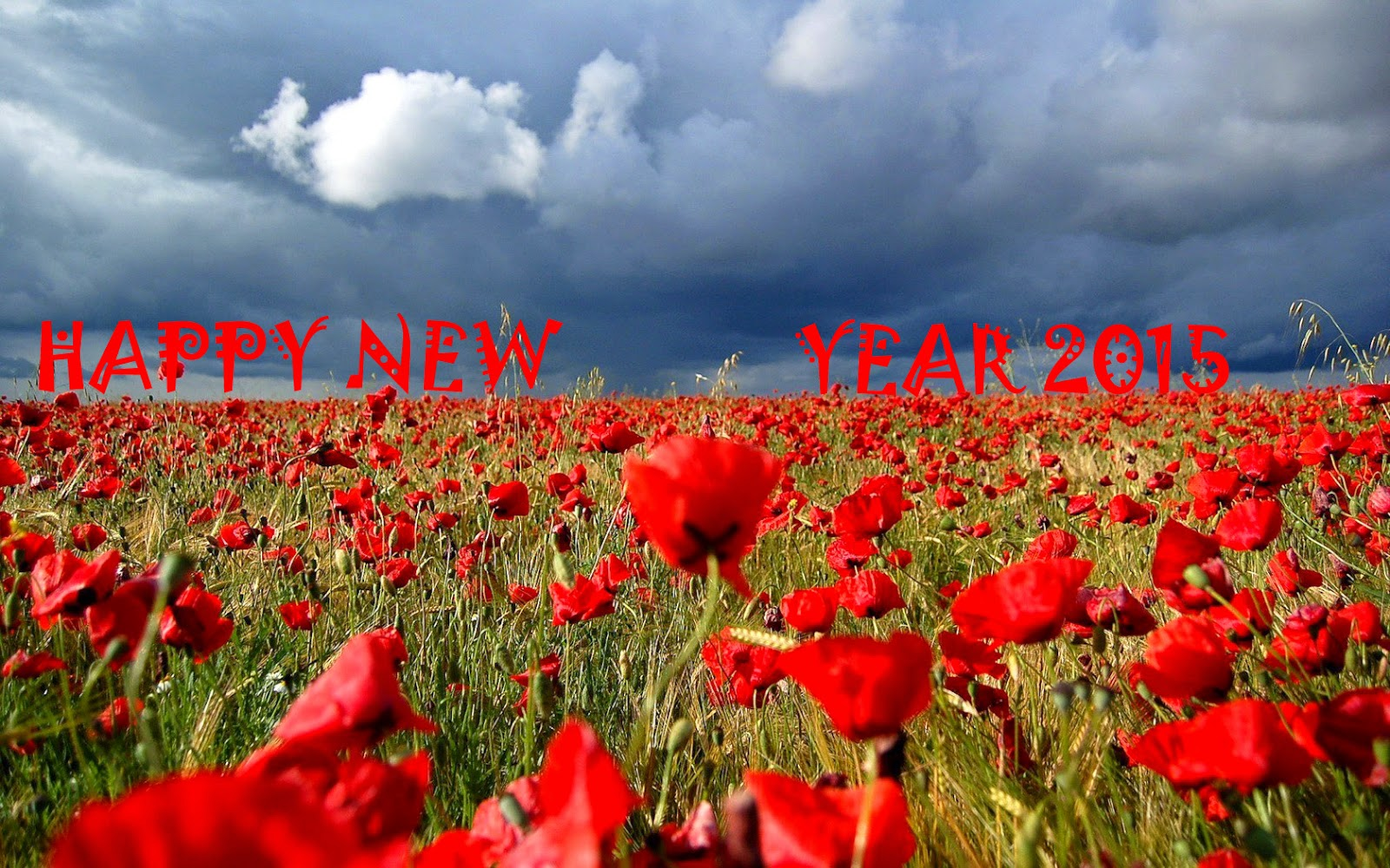 Happy New Year 2015 - Best eCards