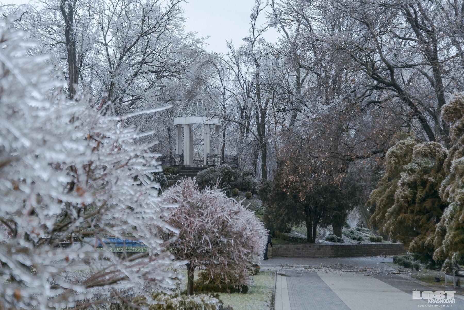 Парк Краснодара после ледяного дождя