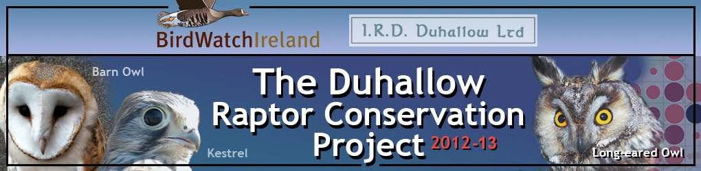 Duhallow Owl and Kestrel Project