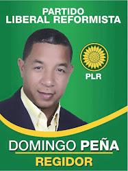 Domingo Peña