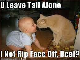 funniest baby captions