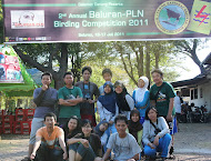 Peksia on 2nd Annual Baluran-PLN Birding Competition