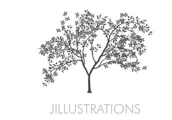 Jillustrations