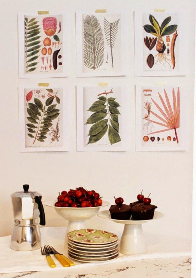 Deco DIY] Láminas de botánica vintage para decorar – Virlova Style