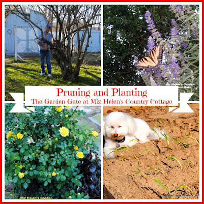 Pruning and Planting Time