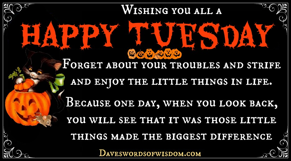 Wishing You All A Happy Tuesday.