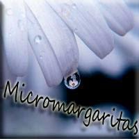 http://micromargarita.blogspot.com.es