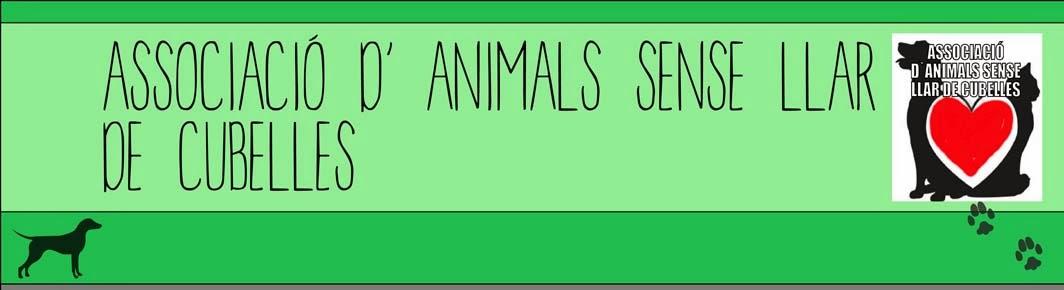 ASSOCIACIÓ D' ANIMALS SENSE LLAR  A CUBELLES