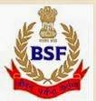 (BSF) Logo