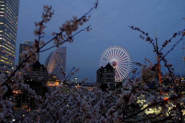 Sakuragicho Yokohama Japan 桜木町 横浜
