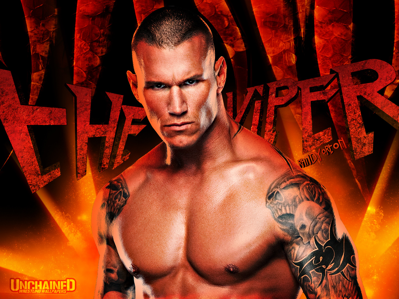 Randy orton wwe superstar cool and amazing pics 2012 for Cool wwe pictures