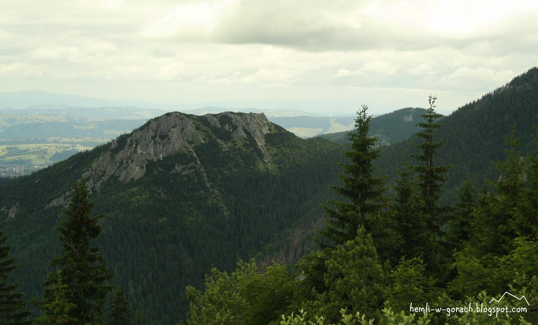Widok na Sarnią Skałę z Grzybowca