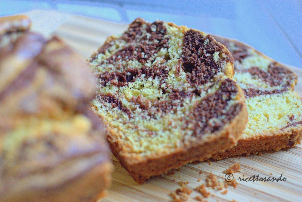 Plumecake variegato al cacao ricetta di un dolce veloce e semplice
