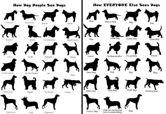Dog People Vs. Everyone Else