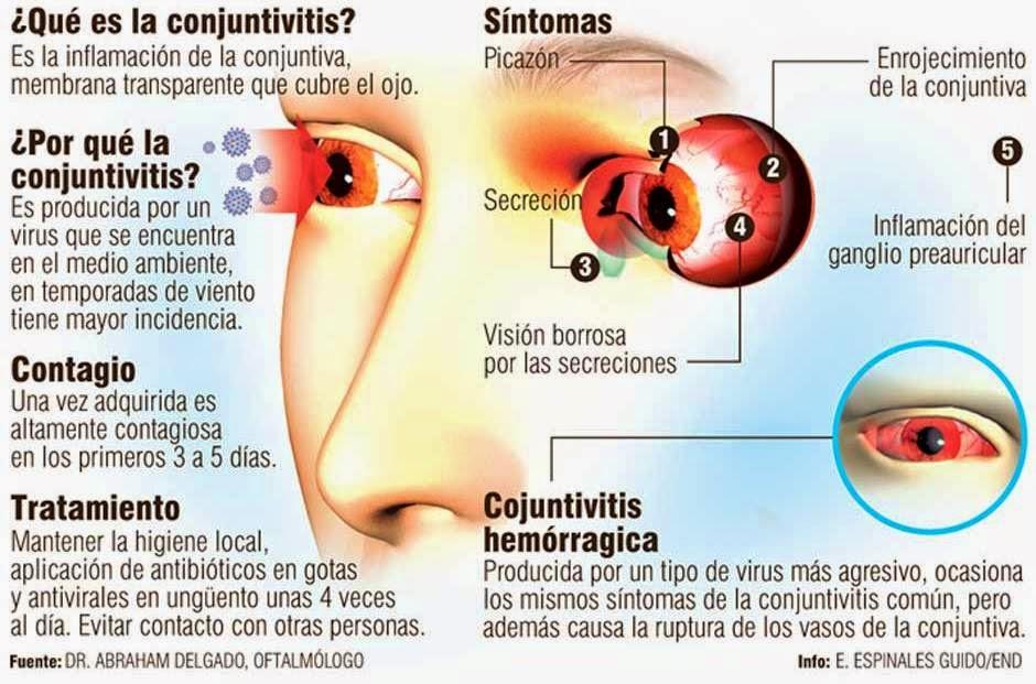 Los parásitos en el organismo de la persona de la foto la descripción