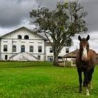 Aprile 2014: Seguindo a rota de Pedro Alvares Cabral (Brasil)