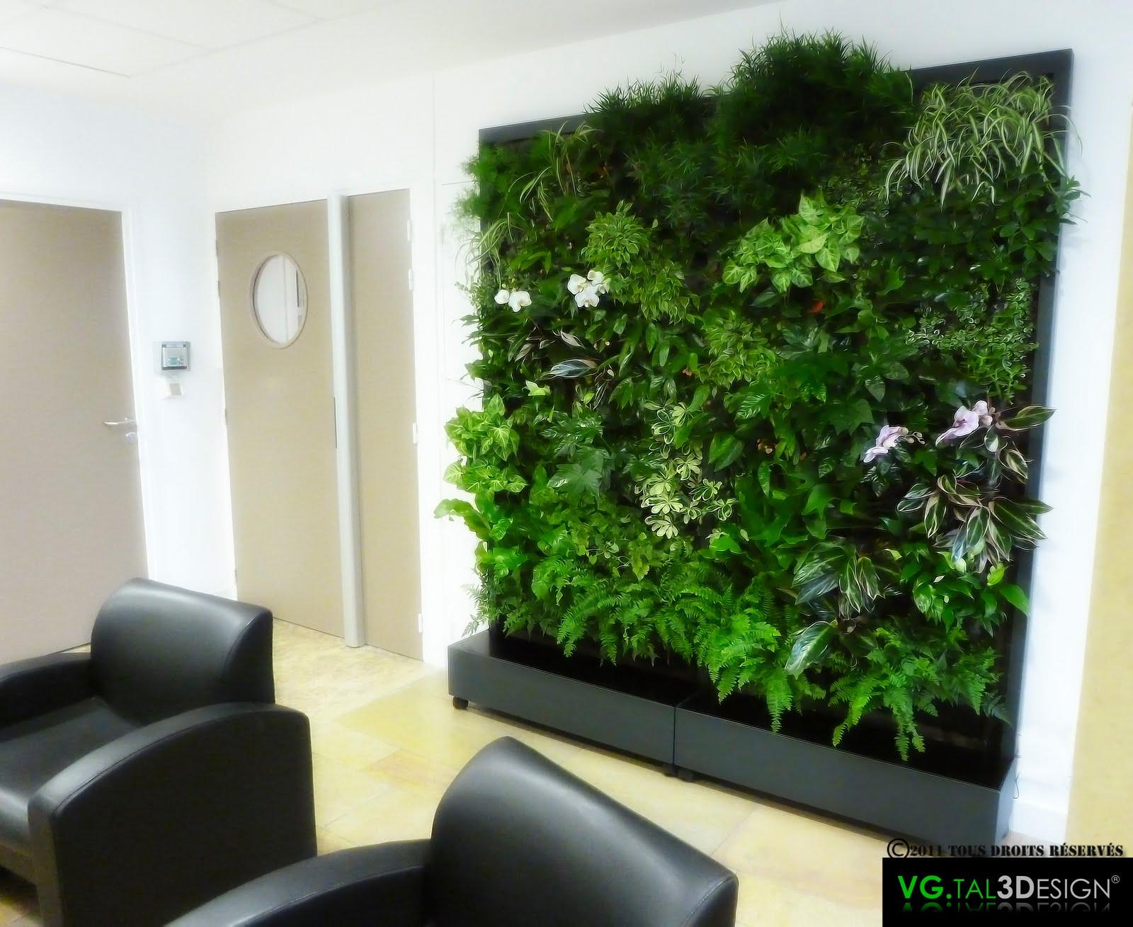 Vgtal3design tableau v g tal for Mur vegetal exterieur quelles plantes