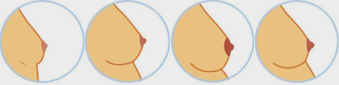 Ibu Hamil 19 Tanda Tanda Kehamilan