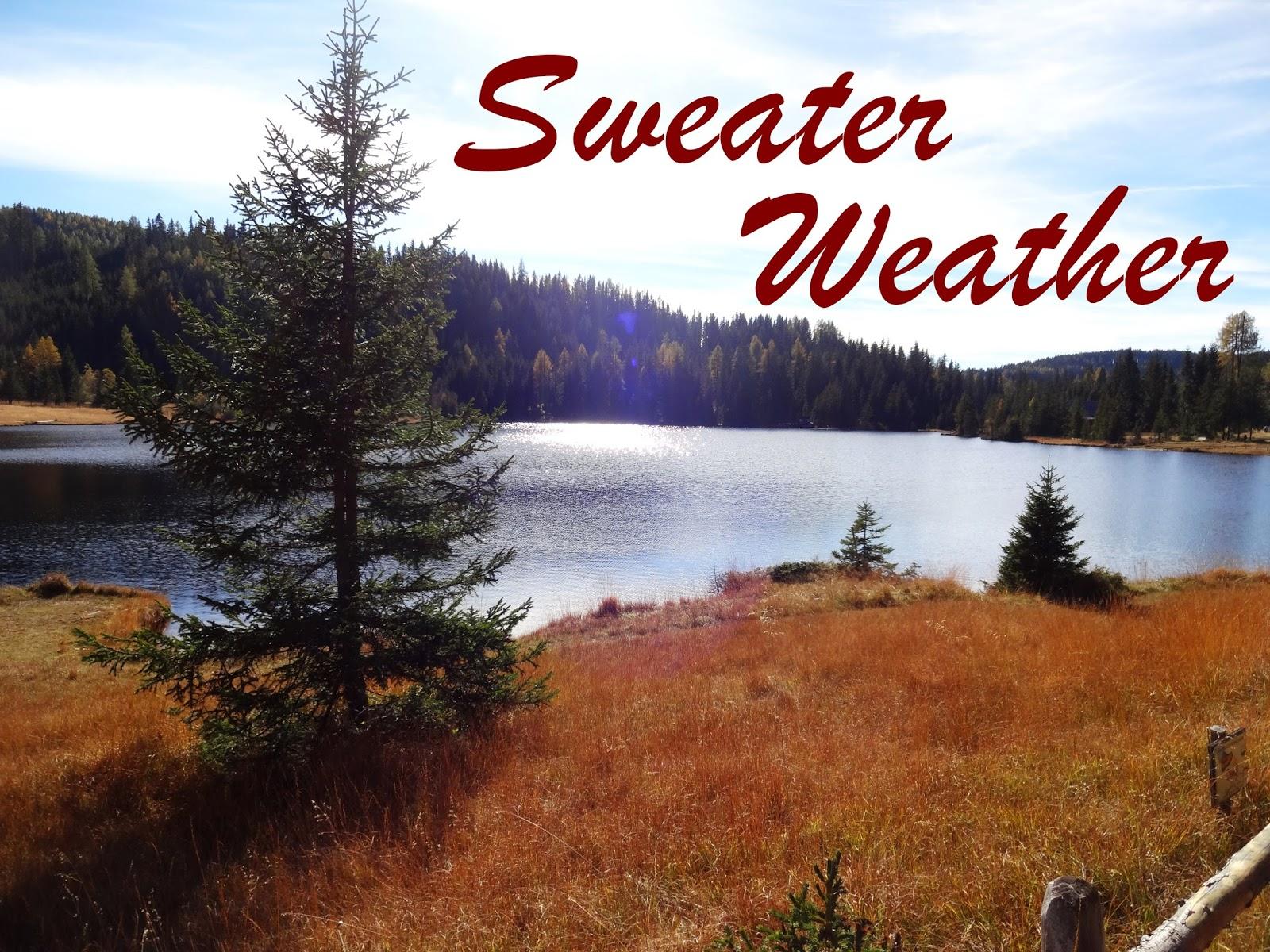 Sweater Weather, Herbststimmung, See, Wald, Herbst, Fichte