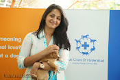 Anushka with Puppy at Blue Cross Pet Carnival Press meet-thumbnail-9