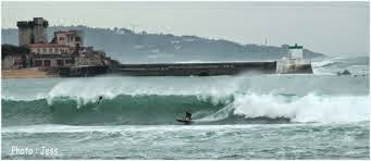Après la dégustation...le surf !