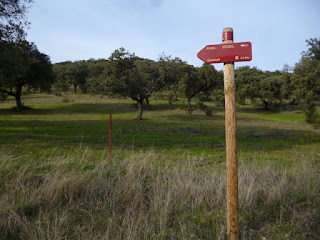 Desvío ramal a Guadalupe