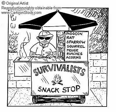 Covertress how quot crazy survivalists quot make the world a better place