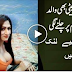 pakistani model sara gilani - image